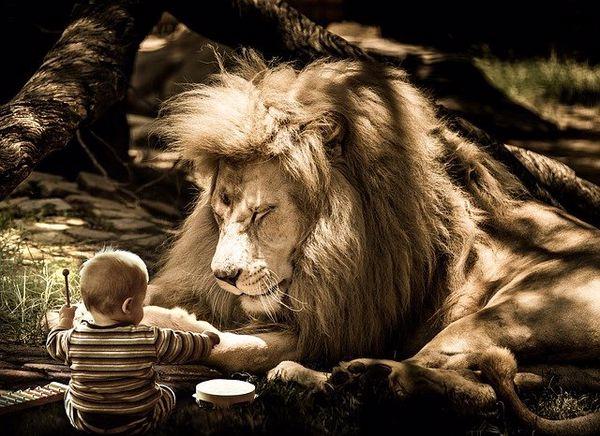 Лучшие домашние животные для детей разного возраста